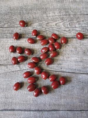 Porzellanperlen linsenförmig 12x9 mm rot braun meliert Großlochperlen Lochgröße 2,8 mm - MONDSPINNE