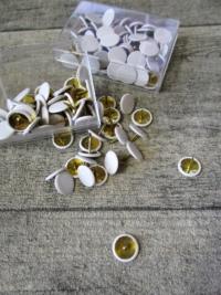 Reißnägel Reißbrettstifte Reißzwecken Metall Kunststoff weiß Wenco 65 Stk - MONDSPINNE